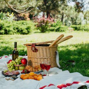 Das Foto zeigt ein Beispielbild für ein Picknick.